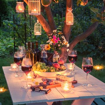 summer wine guide